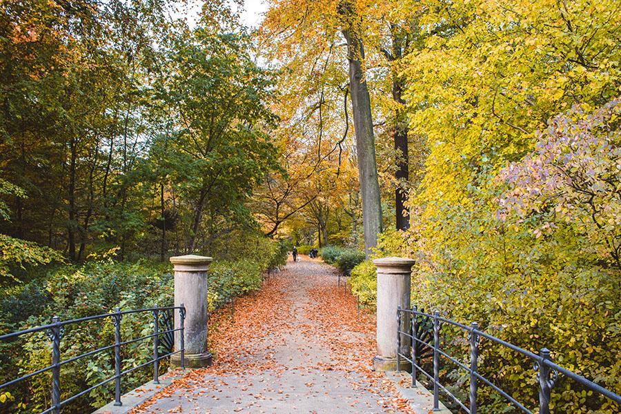 Frederiksberg Have - Copenhague en automne