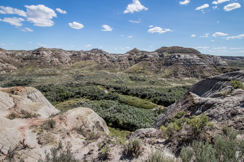Parc Provincial Dinosaur, les Badlands, Alberta