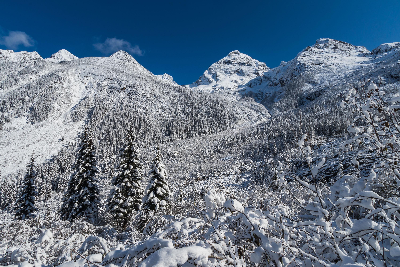 Randonnée Glacier National Park - Colombie Britannique