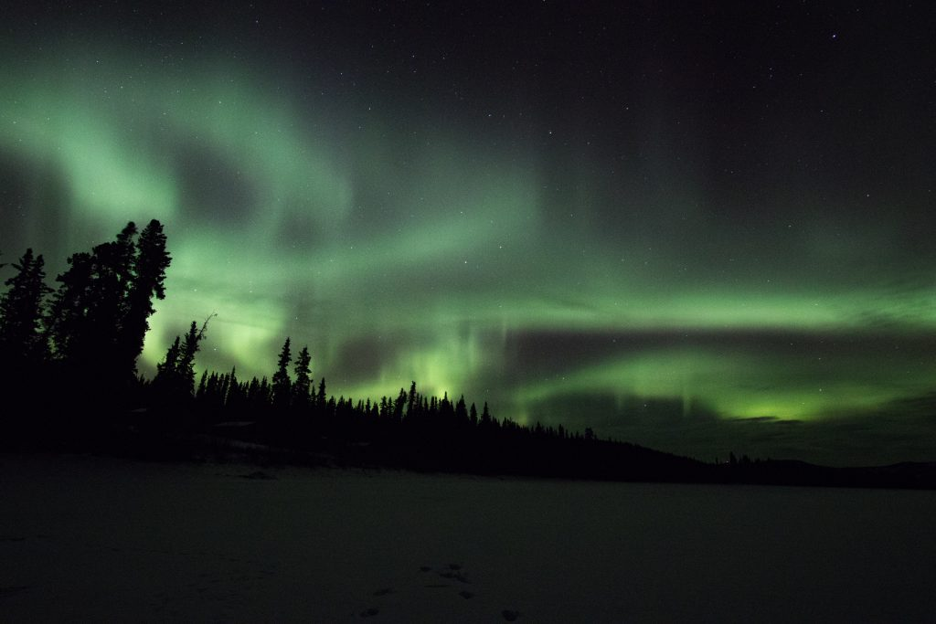 Northern light - Hiver au Yukon - Marie Naudon
