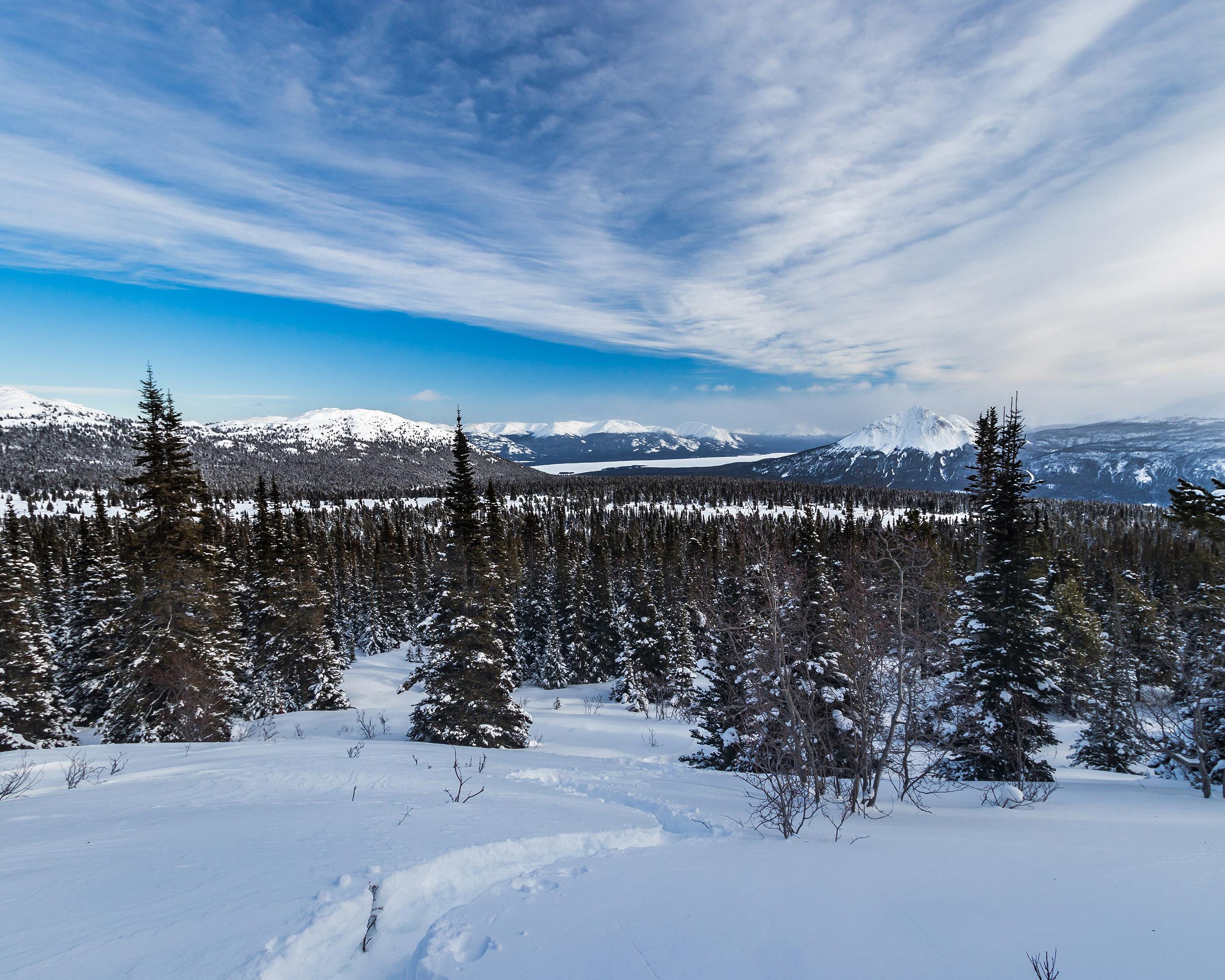 Randonnée en raquette en hiver au Yukon - Marie Naudon