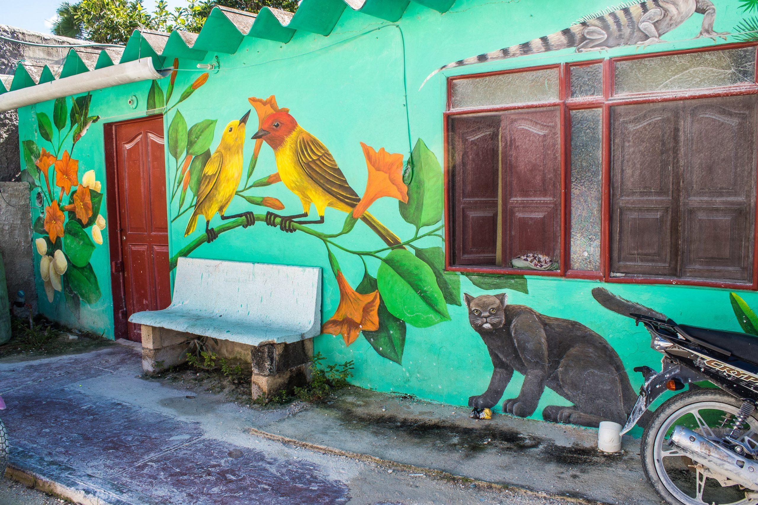 Holbox - Street art - Yucatan - Mexique