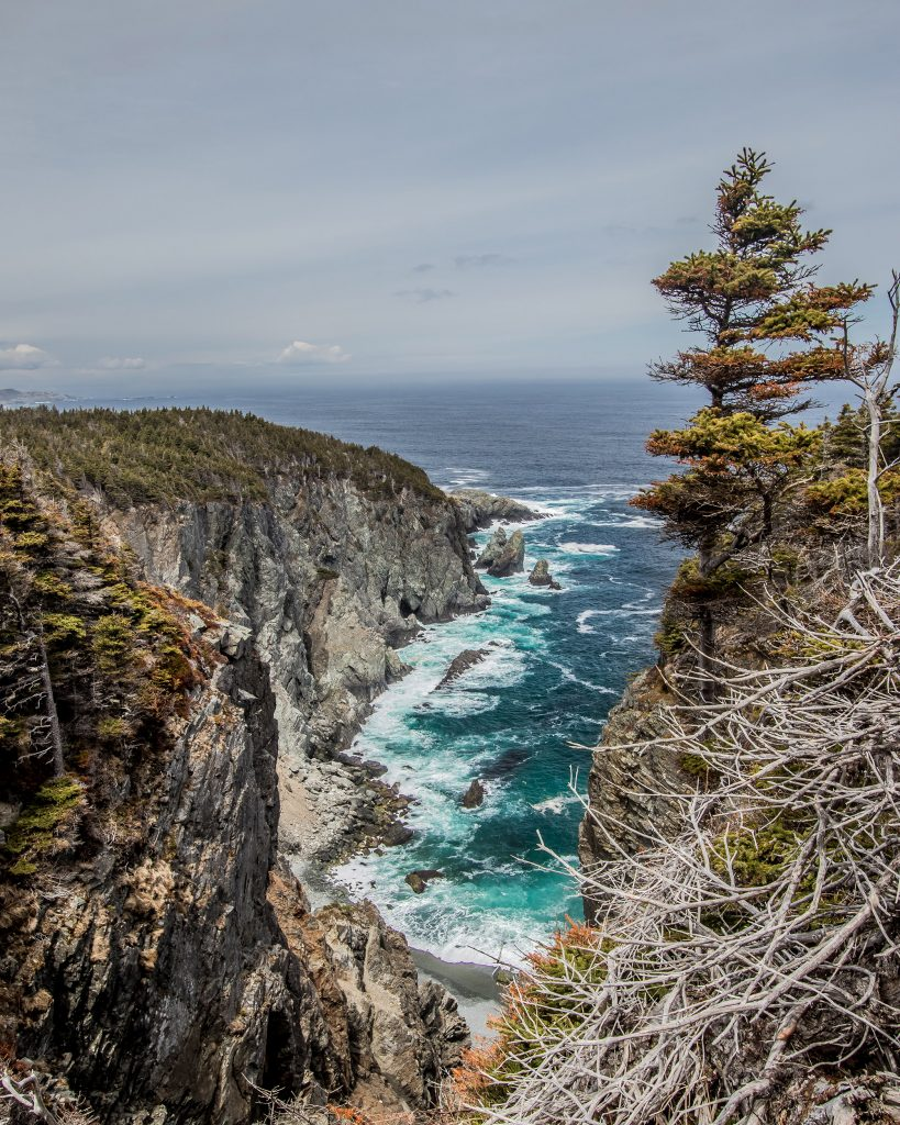 Blackhead, East Coast Trail - Terre Neuve