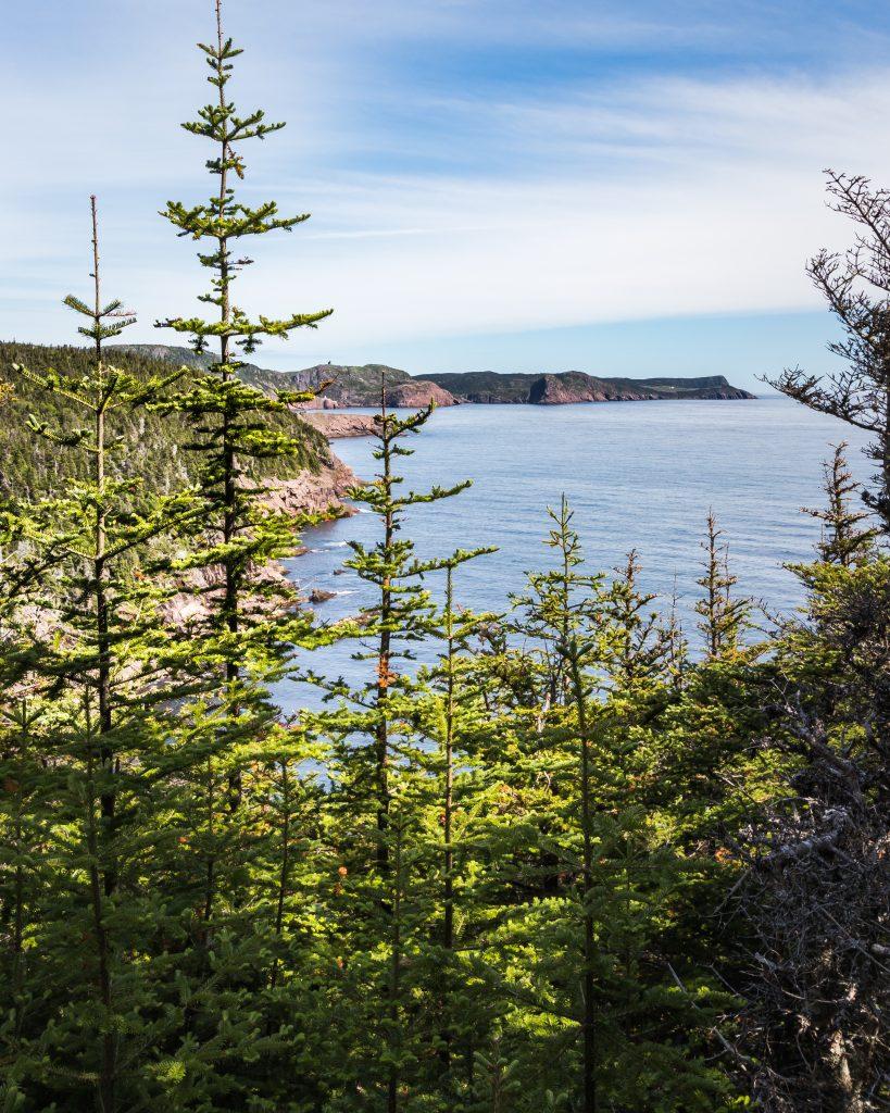 Deadman's Path - East Coast Trail