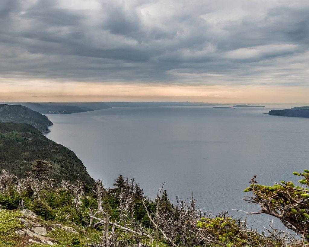 Piccos Ridge path, ECT Newfoundland- Marie Naudon